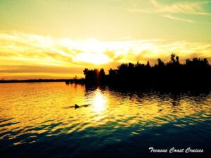 Indian River Cruise with Sunset and Dolphins