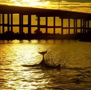 Treasure Coast Sunset Cruise